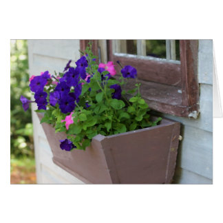 Summer flower box - blank card
