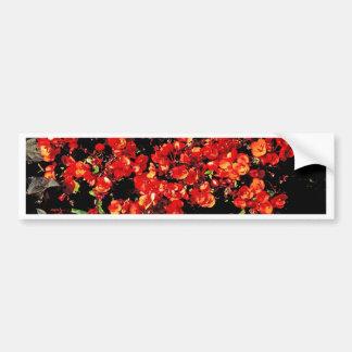 Summer Flowers Bumper Sticker