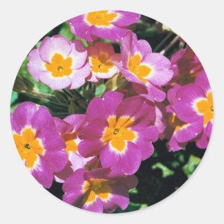 Summer flowers round sticker