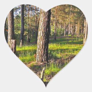 Summer forest in the evening light heart sticker