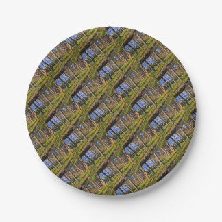 Summer forest in the evening light paper plate