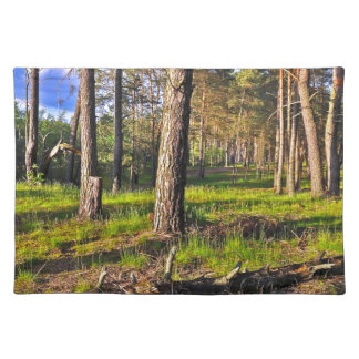 Summer forest in the evening light placemat