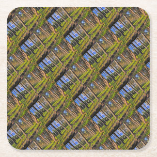Summer forest in the evening light square paper coaster