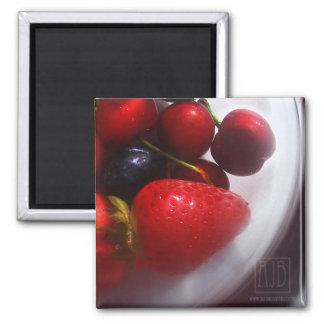 Summer Fruits Magnet