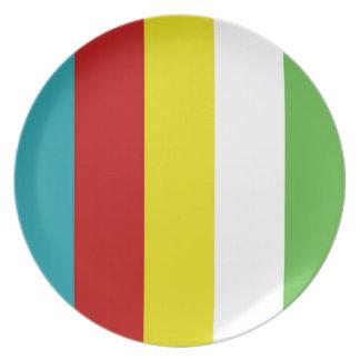 Summer Fun Palette Stripes Plate