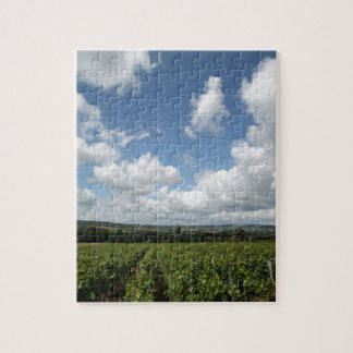 Summer green grapes and blue sky clouds jigsaw puzzle