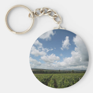 Summer green grapes and blue sky clouds keychain