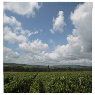 Summer green grapes and blue sky clouds napkin