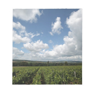 Summer green grapes and blue sky clouds notepad