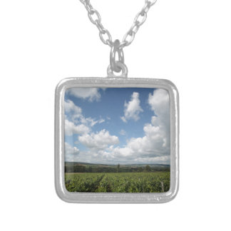 Summer green grapes and blue sky clouds silver plated necklace