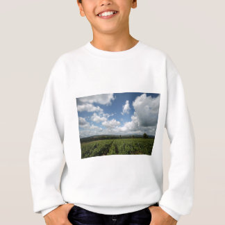 Summer green grapes and blue sky clouds sweatshirt