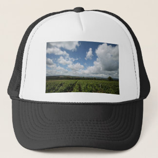 Summer green grapes and blue sky clouds trucker hat
