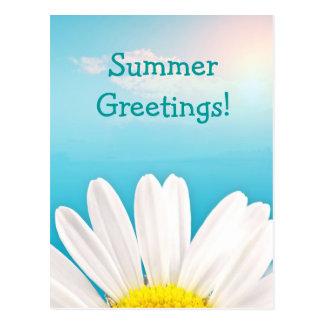 Summer Greetings! Postcard