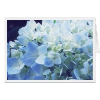 Summer Hydrandea Card