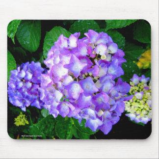 Summer Hydrangea Mouse Pad