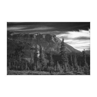 Summer in Rockies Canvas Print