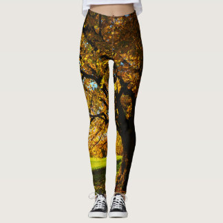 Summer in the country leggings