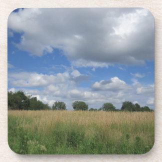 Summer Iowa Prairie Beverage Coaster