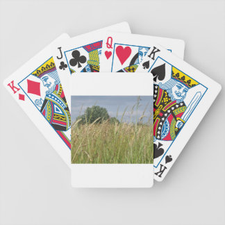 Summer landscape of wild field in the countryside bicycle playing cards