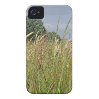 Summer landscape of wild field in the countryside Case-Mate iPhone 4 cases
