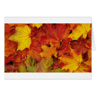 SUMMER LEAVES CARD