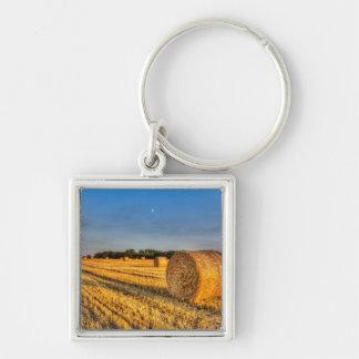 Summer on the farm key chain