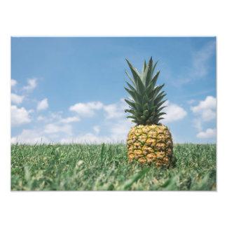 Summer Pineapple Photographic Print