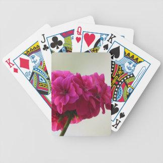 summer poker deck