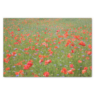 Summer poppies and cornflowers tissue paper