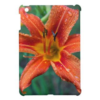 Summer Raindrops Case For The iPad Mini