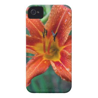 Summer Raindrops iPhone 4 Case-Mate Cases