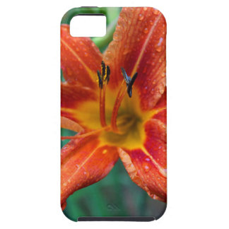 Summer Raindrops iPhone 5 Covers