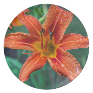 Summer Raindrops Plate