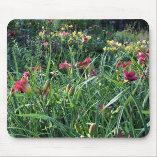 Summer Reblooming Daylily Gardens Mouse Pad