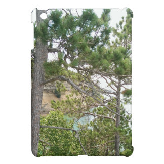 Summer rock iPad mini cases