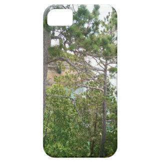 Summer rock iPhone 5 cases