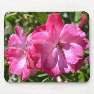 Summer Roses Mouse Pad