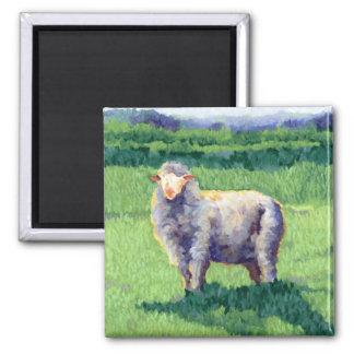 Summer Sheep Shadow Magnet