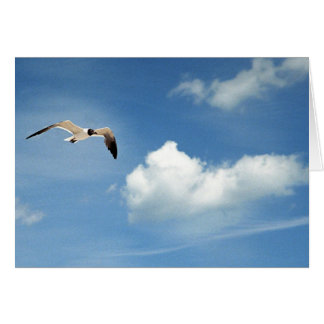 Summer Sky Card
