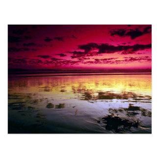 Summer sky reflections, low tide, Huntington Beach Postcard