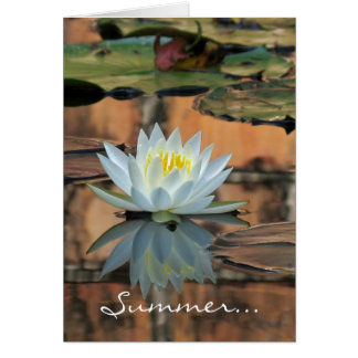 Summer Solstice Water Lily Card