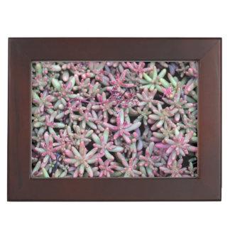 Summer Succulent Natural Pattern Keepsake Box