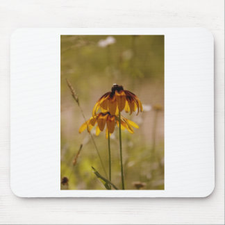 Summer Sunflower Mouse Pad