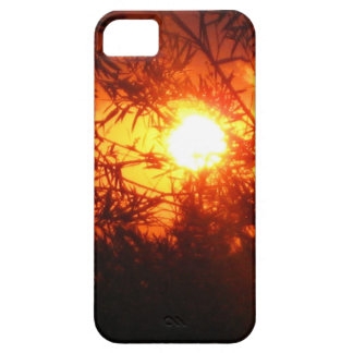 Summer sunset in Canberra iPhone 5 Case