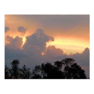 Summer sunset in Canberra Postcard