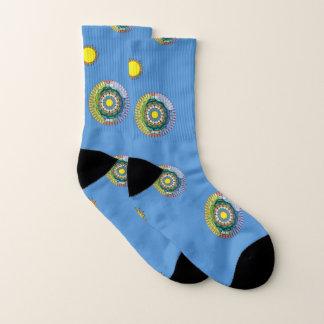 Summer Sunshine Socks 1
