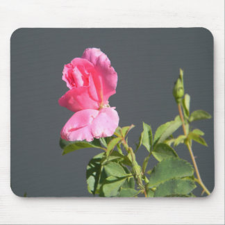 Summer Time Love... Mouse Pad