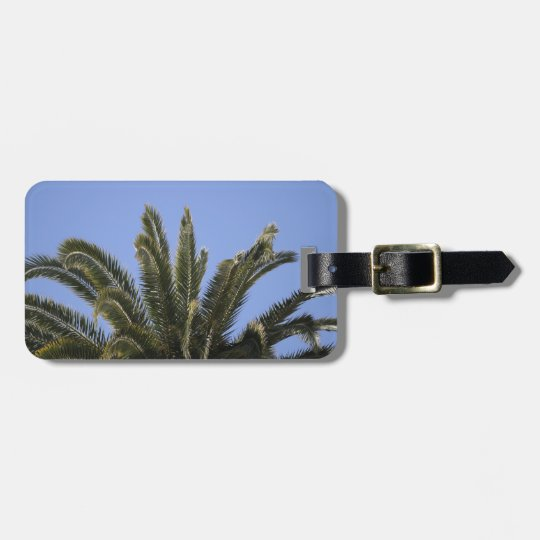 Summer Tropical Palm Tree Fronds Luggage Tag