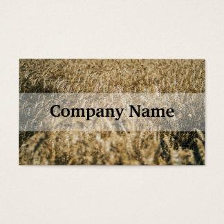 Summer Wheat Field Closeup Farm Photo Business Card