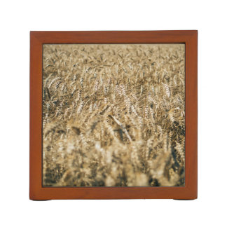 Summer Wheat Field Closeup Farm Photo Desk Organizer